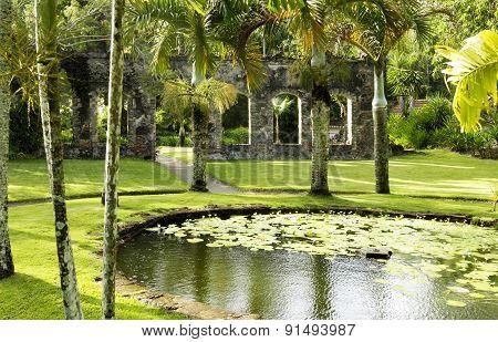 Picturesque Habitation Anse Latouche Garden In Martinique