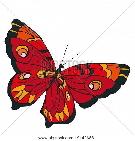 Red Butterfly With Open Wings In A Top View..