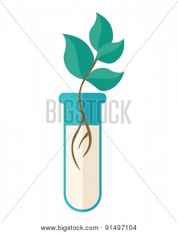 A Chemical test tube with green plant. A Contemporary style. Vector flat design illustration isolated white background. Vertical layout.