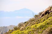 foto of volcanic  - View of El Teide Volcan in Tenerife From Gran Canria Mountains Canary Islands Spain - JPG