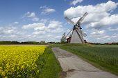 foto of windmills  - The windmill Bierde  - JPG