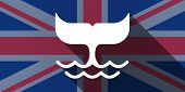 picture of whale-tail  - Illustration of an UK flag icon with a whale tail - JPG