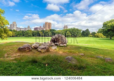 summer landscape in the Central park New York USA