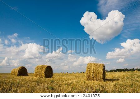 heart in the sky with space left for the text inserting- golden hay bales in the countryside on a perfect sunny day