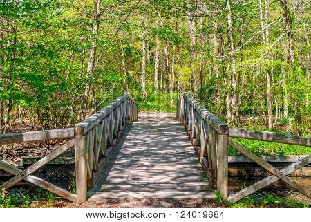 A wooden foot bridge through this Spring woodlands in Long Island.