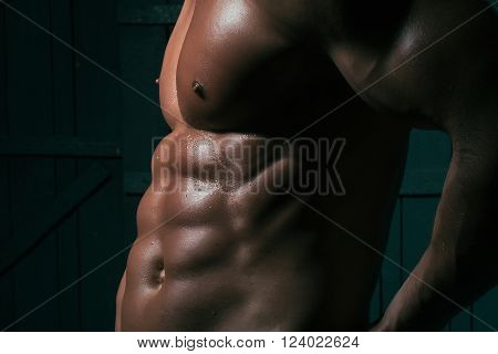 Sexual Iron Shirtless Male Torso