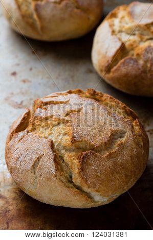 Bread Bun On Steel Plate