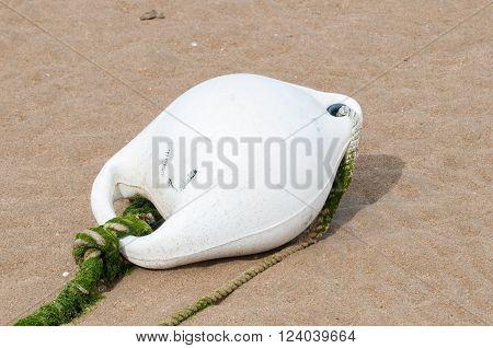 White Buoy