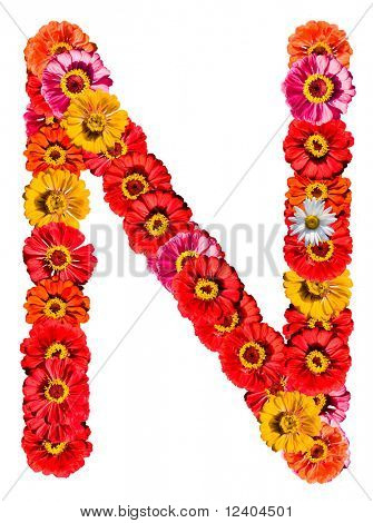 Alphabet collection made from different flowers- N