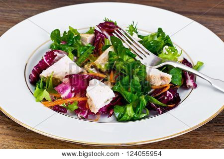 Salad Mix Batavian, Frise, Radicchio, Chicory  Chicken Dietary Meal
