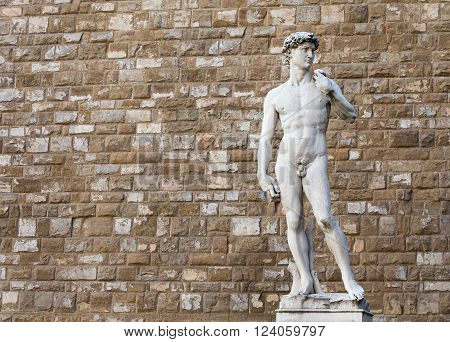 The statue of David by Michelangelo on the Piazza della Signoria in Florence Italy. Distracting background items were removed from the wall to provide a cleaner image.