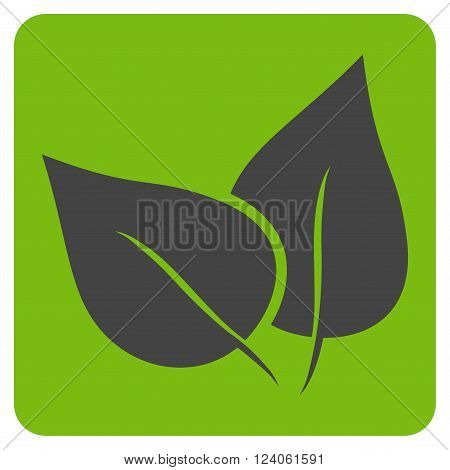 Flora Plant vector pictogram. Image style is bicolor flat flora plant iconic symbol drawn on a rounded square with eco green and gray colors.