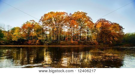 Autumn Landscape From Water