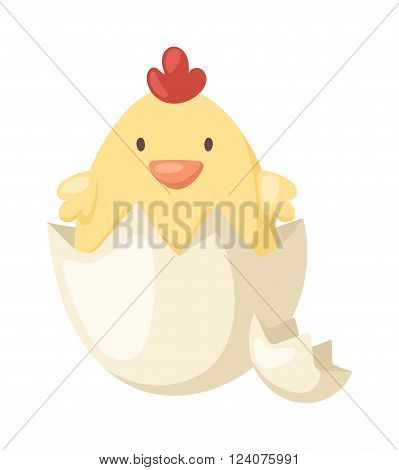 Fluffy little cartoon chick hatched from an egg and animal yellow baby cute chick in egg. Chick in egg small farm spring newborn animal. Cartoon yellow newborn chicken in the broken egg shell vector.