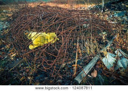 After the war.A child's toy in the barbed wire