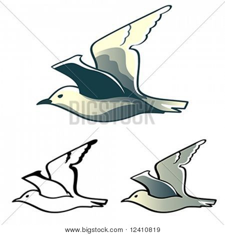 Flying albatross (or seagull) designs isolated