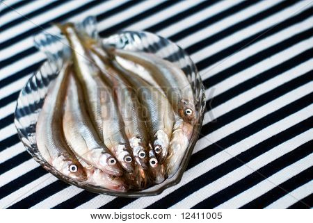 Famous fresh Baltic fish smelt or korjushka over striped seaman fabric