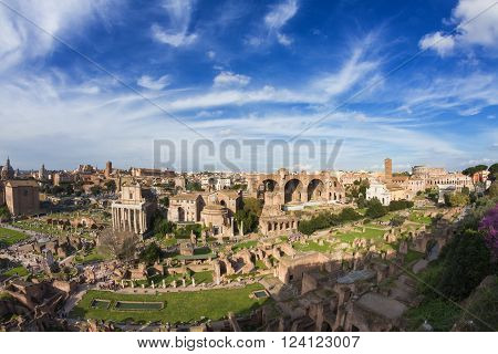 Wide angle view of the Forum Romanum under a beautiful sky Rome Italy