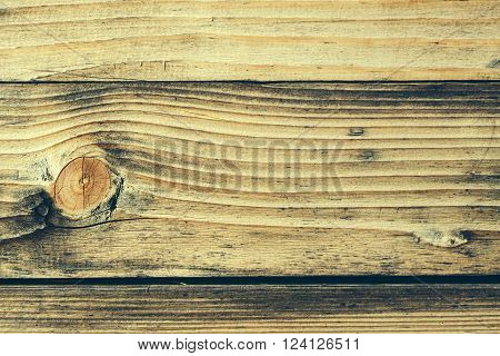 Wood Knot In Horizontal Section