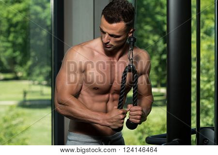 Exercise For Triceps On Cable Machine