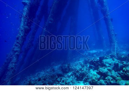 Submerged structures in the tropical waters of the Caribbean island of Bonaire
