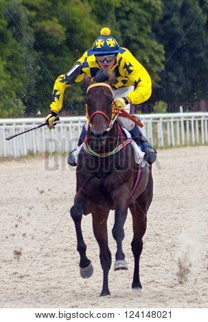 Action shot of jockeys in horse race,Pyatigorsk,Northern Caucasus.