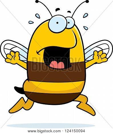 Bee Panic
