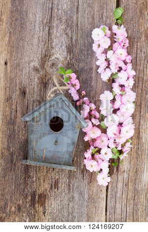 fresh cherry twigs with fresh pink   flowers  and birdcage on wooden table