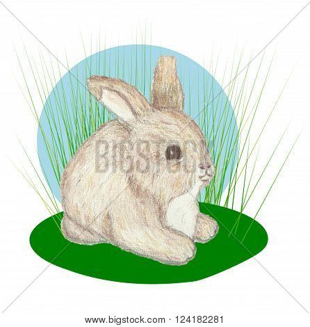 One little bunny lying  in tall grass.
