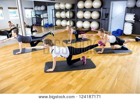 Group exercise pilates to strengthen core muscles and balance in a fitness gym. Workout class doing exercise called bird dog.