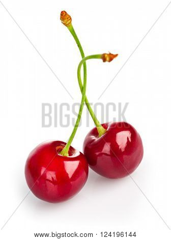 Two fresh ripe cherries. Isolated on white background