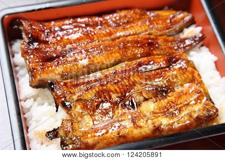 typical Japanese dish broiled eels on rice