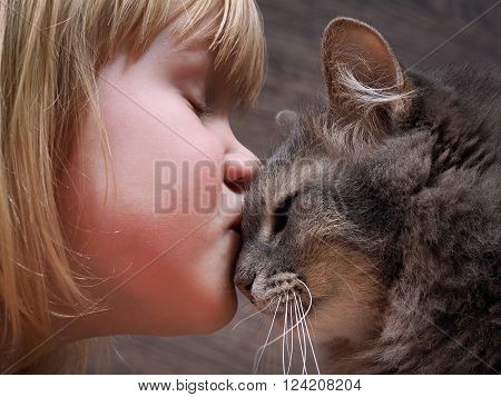 Kiss the little girl and cat. Love, baby and cat attitude