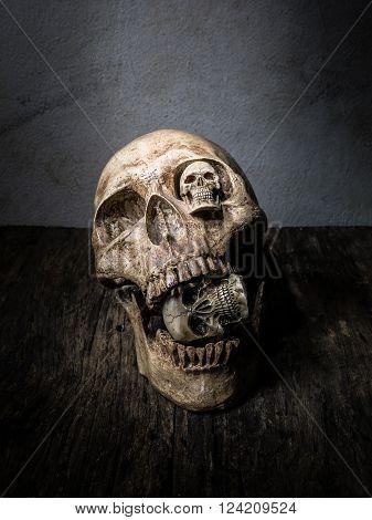 Abstract  three face of skull in still life