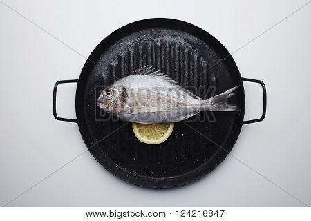 Presentation Of Fresh Wild Sea Bream On Grill Pan Ready To Cook, Isolated In Center Of White Table W