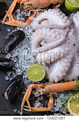 Langoustines And Octopus On Ice
