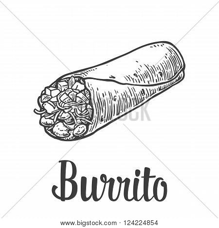Burrito - mexican traditional food. Vector vintage engraved illustration for menu poster web. Isolated on white background