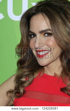 LOS ANGELES - APR 1:  Dr Darcy Sterling at the NBC Universal Summer Press Day 2016 at the Four Seasons Hotel on April 1, 2016 in Westlake Village, CA