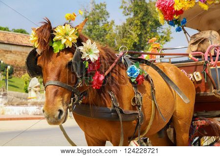 Lampang Thailand - February 3 2015: The horse carriage in Lampang at Wat Phra That Lampang Luang Lampang province