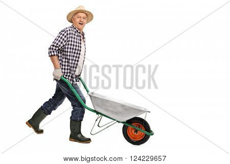 Mature gardener pushing an empty wheelbarrow and looking at the camera isolated on white background