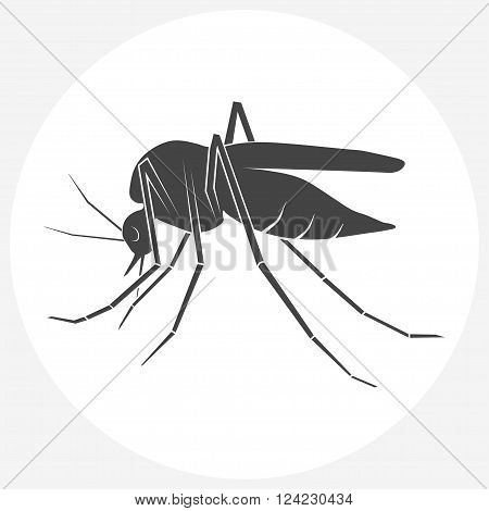 Mosquito silhouette. Insect Mosquito isolated on white background. Flat icon vector.