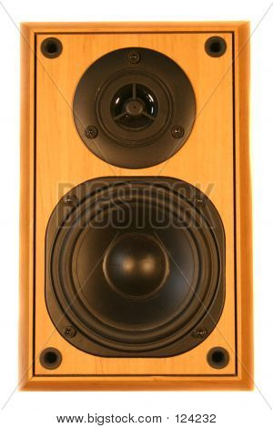 Beach Wood Finished Speaker poster