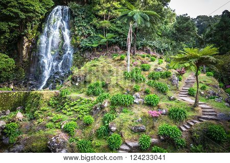 Waterfall in the background of lush vegetation Sao Miguel Island,Azores,Portugal .