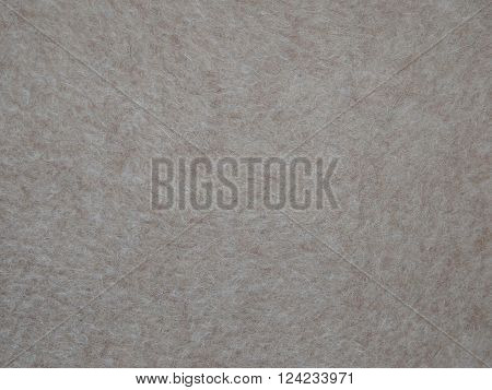 beige natural wool fabric from sheep's wool