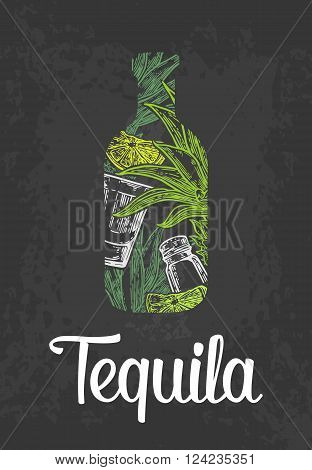 Bottle of tequila with glass cactus salt and lime. Color hand drawn sketch on vintage black background. Vector engraved illustration