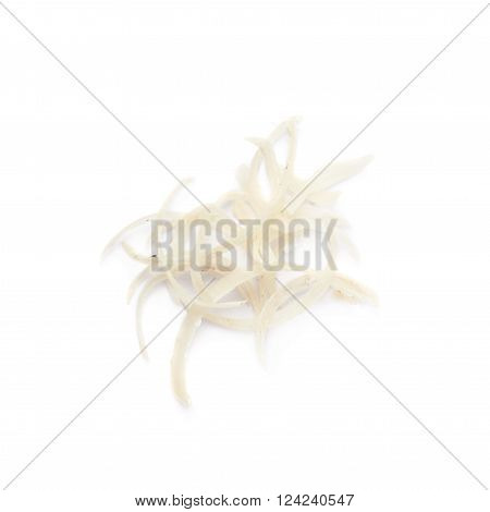 Pile of dirty cut human nails isolated over the white background
