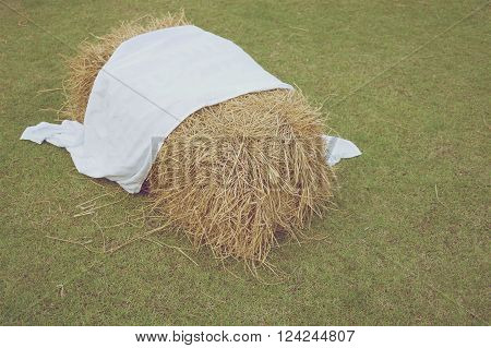 Cluster of straw from dry bamboo leaves with white fabric on green lawn in vintage style.