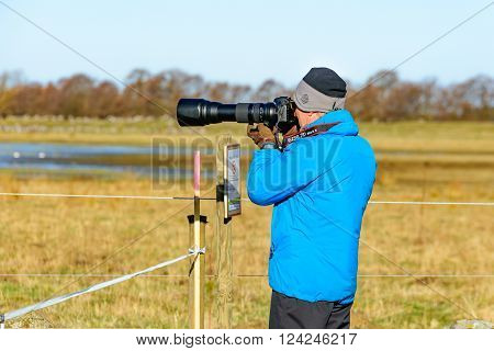 Bird Photographer