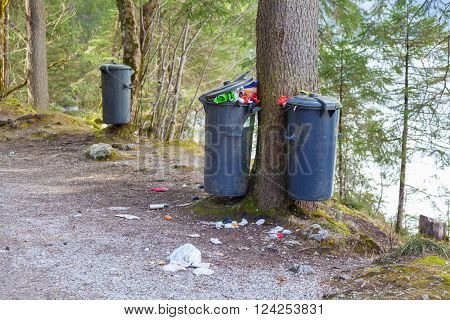 Overflowing Trash Can In The Forest