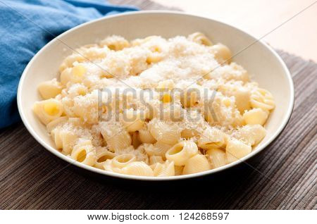 Pipe or shell pasta with a creamy alfredo sauce and parmesan cheese